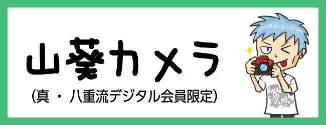 TOUR2019 山葵カメラ